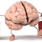 Пять эффективных принципов нейромаркетинга